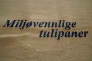 Miljøvennlige tulipaner